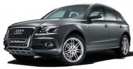 Ön Koruma Bariyeri - Audi Q5 Ön Tampon Koruması (ZK-Q5-001)